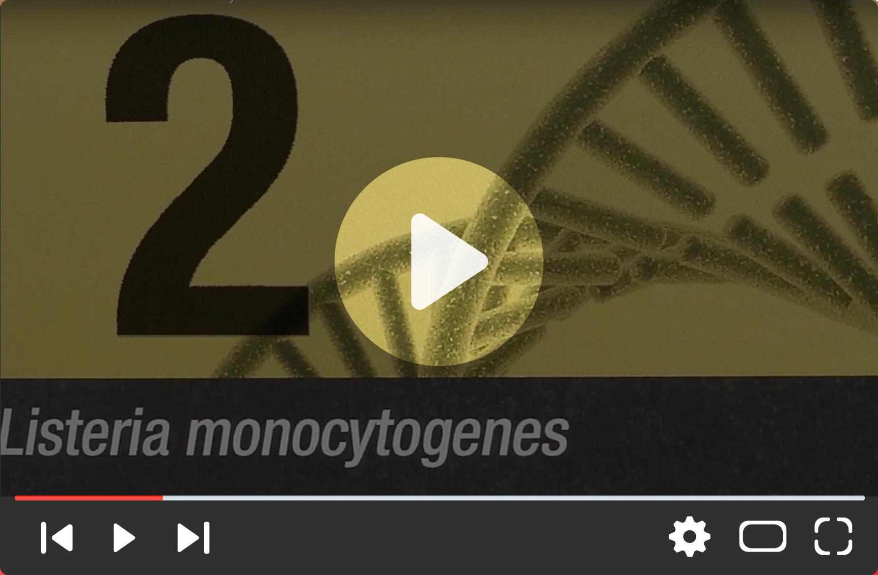 3M™ Molecular Detection System 2